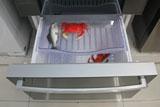 镜面玻璃 容声法式冰箱成为家居装饰品