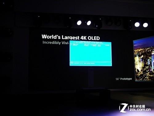 顶级OLED电视 索尼CES2013发布会综述