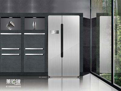 欧式尊贵设计 新飞莱铂锐系列冰箱抢先看