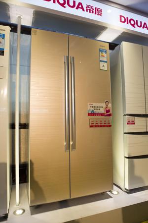 帝度对开门冰箱