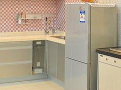 小身材蕴含大实惠 精品两门冰箱全推荐