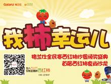 我柿幸运儿——格兰仕全民赛西红柿炒蛋颁奖盛典&首届西红柿食尚沙龙