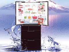 洁优乐娱乐润享新鲜 夏普进口旗舰冰箱试用