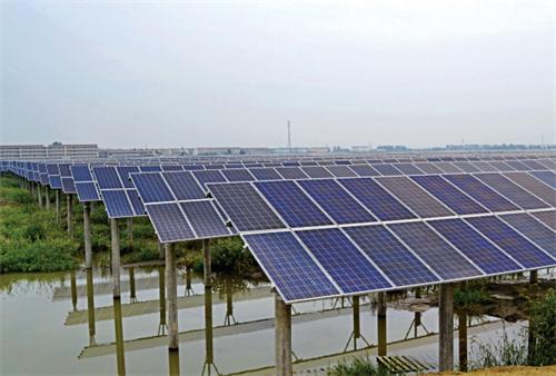 中国光伏业发现新财源:太阳能板下养毛蟹
