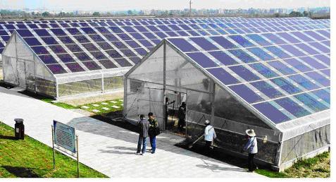 [天津]成功引进温室太阳能增温技术