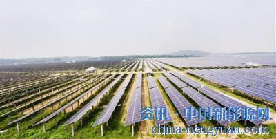 [江西]首座农光互补光伏电站成功并网