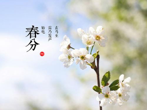 又是一年春分日 春分出游该注意些什么