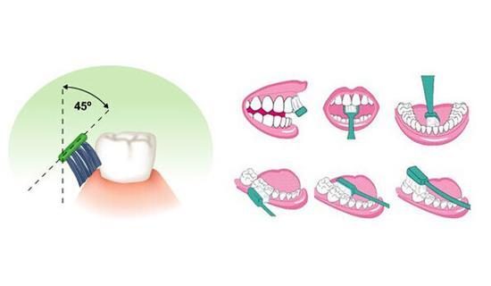 刷牙发展史 没牙刷没牙膏古人该如何刷牙