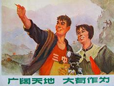 从戴尔到苹果:跨国巨头在中国的上山下乡