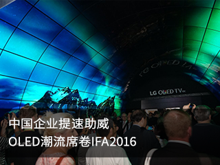 中国企业提速助威 OLED潮流席卷IFA2016