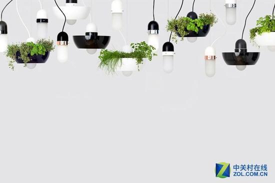 绿植灯罩让室内环境更美好