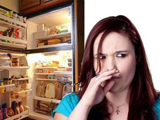 """外面的霾躲不过 冰箱里的""""霾""""咱这么治"""
