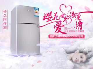 时刻陪伴更用心 樱花双门迷你冰箱呵护您