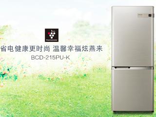 健康省电更时尚 夏普超经典双门家用冰箱