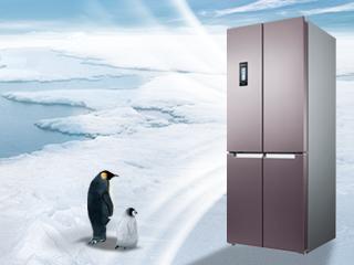 游走于冰点的新鲜 博世十字门冰箱评测
