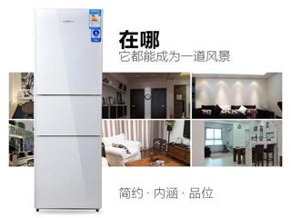 默默守护您的健康 新飞除菌保鲜三门冰箱