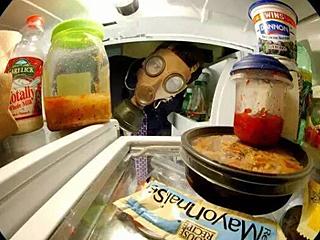 """冬去春来之际 别再让冰箱囤积""""细菌""""了"""