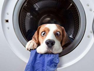 对皮肤疾病说不 带抑菌功能洗衣机推荐