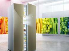 想学雅痞范儿 不如买台对开门冰箱提气质