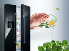 智能互联 貌美又有才的西门子对开门冰箱