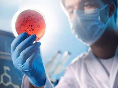 细菌传播旺季 我们靠什么守护健康