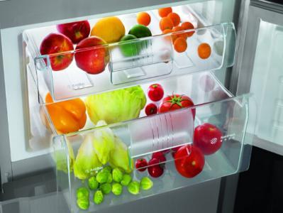 生活常识:冰箱的低温真的能杀死细菌?