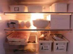 淘宜家不如买个它:自带收纳技能的冰箱