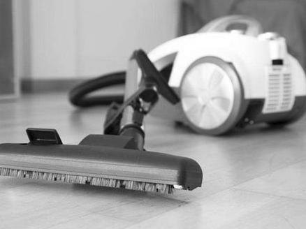 智能化养大吸尘器市场 清洁电器份额激增