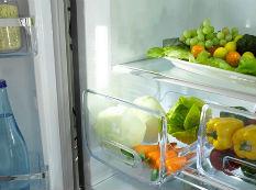 消费有据可依 家电院成立健康冰箱联盟