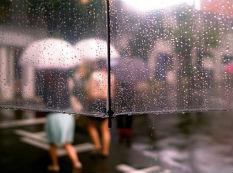北京将连续多日降雨 你不需要伞也得要它