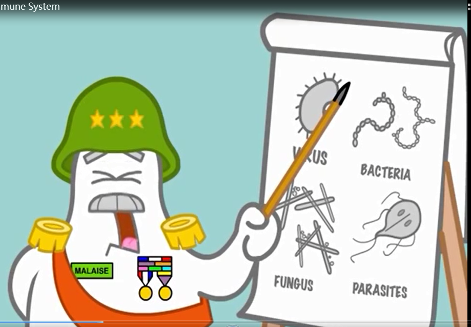 高温天也是细菌的温床 除菌你重视了吗?