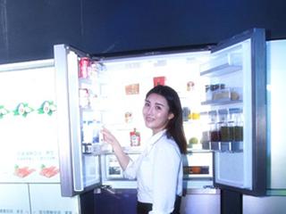 亚洲收纳王子:用1台F+冰箱装下99种食材