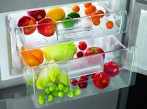 价格回到十年前 冰箱市场今后3年将遭低谷