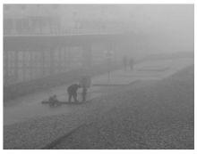 PM2.5爆表 TCL空气净化器保卫呼吸健康