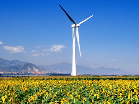 全疆风力发电和太阳能发电容量位居全国前列