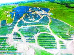 首个熊猫太阳能电站昨起正式运营!