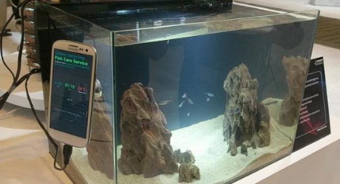 旧手机有什么用?三星用40台S5做了个比特币挖矿机