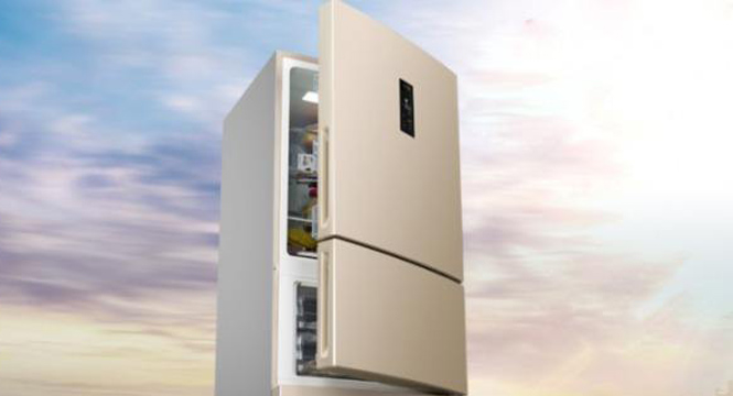 变频:从冰箱卖点到行业趋势