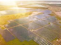 """巴西""""霹雳波""""太阳能电站于11月正式投入运营"""