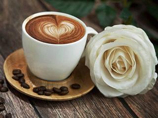 爱喝咖啡口感挑剔,试试Ta的现磨鲜煮!