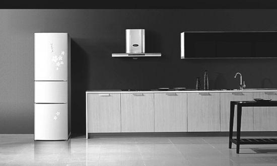 灵活分割储藏空间 大容量三门冰箱推荐