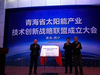 青海成立太阳能产业技术创新联盟!