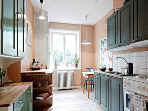 一个人的生活也能丰富多彩 单门冰箱迷你保鲜