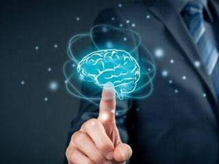 看见你的大脑 专家称人工智能或能读懂人脑