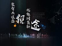 2017年度中国智能显示与创新应用产业大会