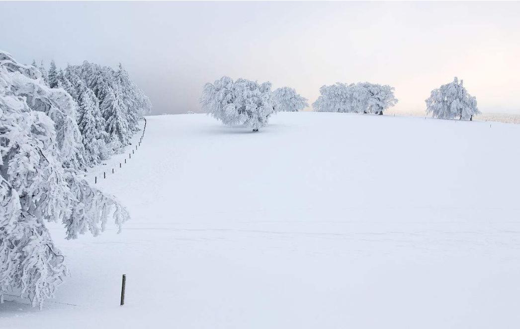 您家的除湿机冬季效果不显著?原因竟是这个