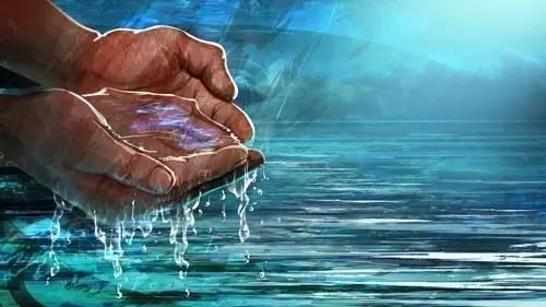 分配水时身体内的所有器官都会受到监控