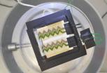 蓝绿藻化身太阳能电池 或将革新光伏应用空间