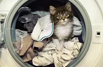 春天到!大容量洗衣机帮你轻松搞定过冬衣物