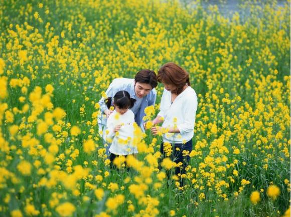 2018春季保护呼吸道健康 空气净化器十大排名该如何选购